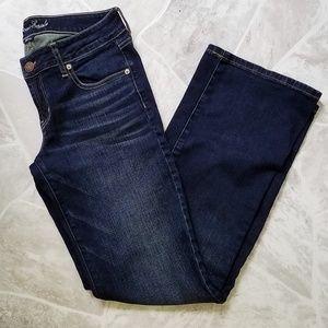 American Eagle Fovorite Boyfriend Blue Jeans